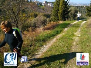 Nordic walking - Fuori porta tra uliveti, vigneti e campagne di Chieti @ Campus Villaggio Mediterraneo, Chieti Scalo | Chieti | Abruzzo | Italia