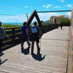 ponte in legno torrente cerrano sul lungomare a Silvi marina allenamento in nordic walking