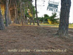 a Silvi - nordic walking venerdi @ Pineta di Silvi Marina | Silvi | Abruzzo | Italia